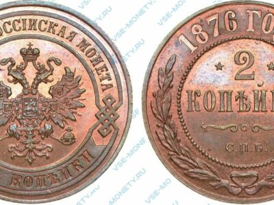 Медная монета 2 копейки 1876 года