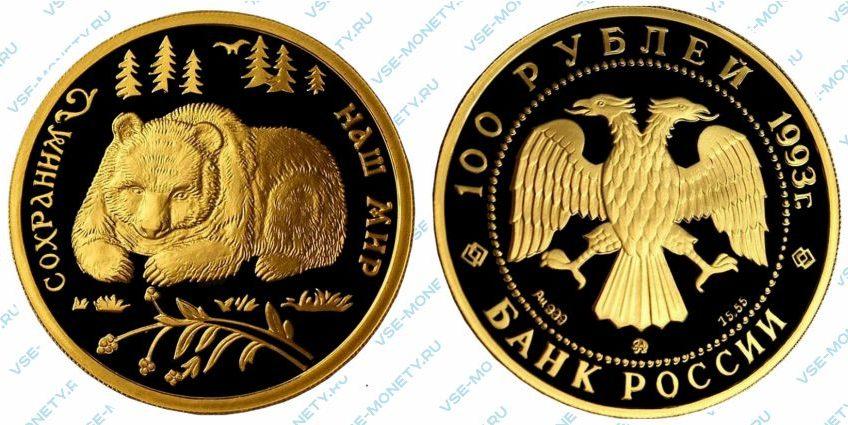 Памятная золотая монета 100 рублей 1993 года «Бурый медведь» серии «Сохраним наш мир»