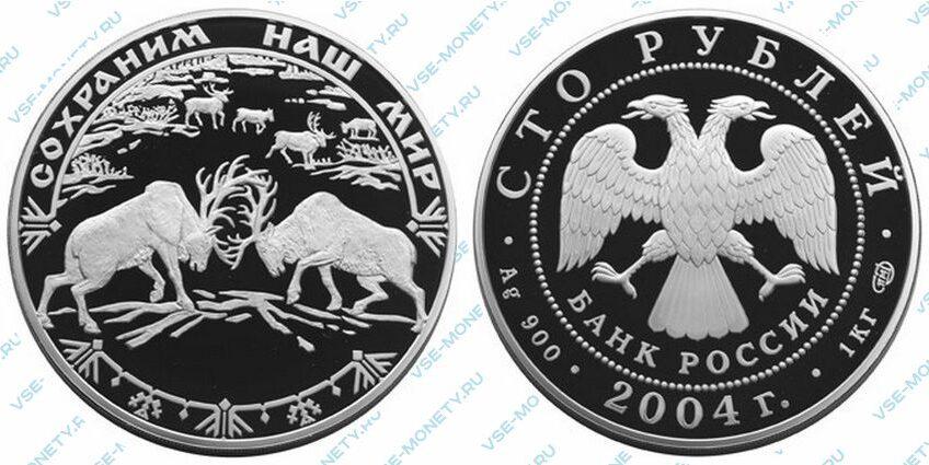Юбилейная серебряная монета 100 рублей 2004 года «Северный олень» серии «Сохраним наш мир»
