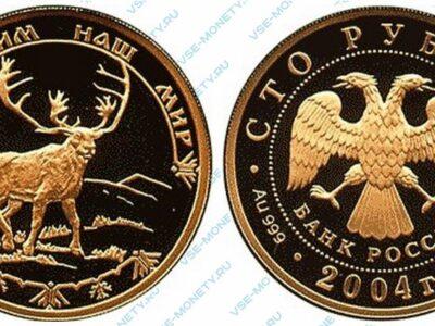 Юбилейная золотая монета 100 рублей 2004 года «Северный олень» серии «Сохраним наш мир»