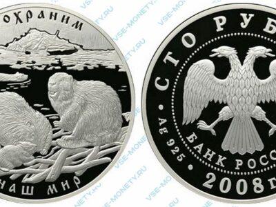Юбилейная серебряная монета 100 рублей 2008 года «Речной бобр» серии «Сохраним наш мир»