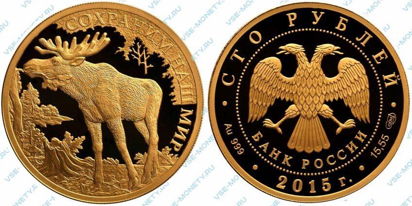 Юбилейная золотая монета 100 рублей 2015 года «Лось» серии «Сохраним наш мир»