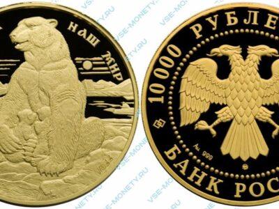 Памятная золотая монета 10000 рублей 1997 года «Полярный медведь» серии «Сохраним наш мир»