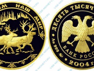 Юбилейная золотая монета 10000 рублей 2004 года «Северный олень» серии «Сохраним наш мир»