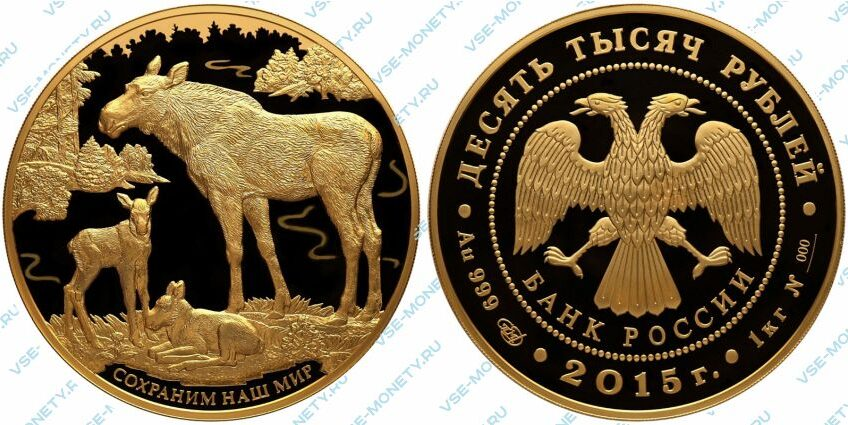 Юбилейная золотая монета 10000 рублей 2015 года «Лось» серии «Сохраним наш мир»
