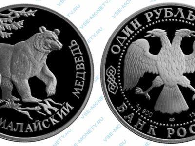 Памятная серебряная монета 1 рубль 1994 года «Гималайский медведь» серии «Красная книга»