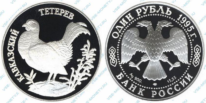 Памятная серебряная монета 1 рубль 1995 года «Кавказский тетерев» серии «Красная книга»