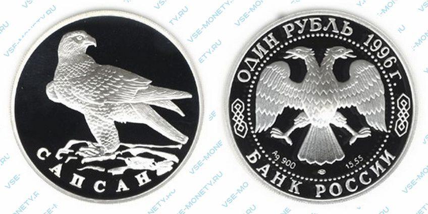 Памятная серебряная монета 1 рубль 1996 года «Сапсан» серии «Красная книга»