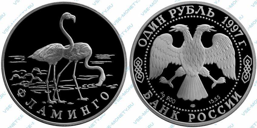 Памятная серебряная монета 1 рубль 1997 года «Фламинго» серии «Красная книга»