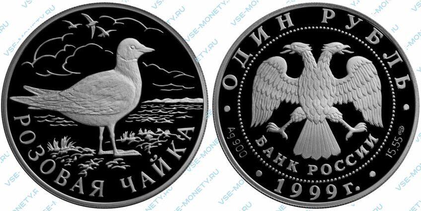 Памятная серебряная монета 1 рубль 1999 года «Розовая чайка» серии «Красная книга»