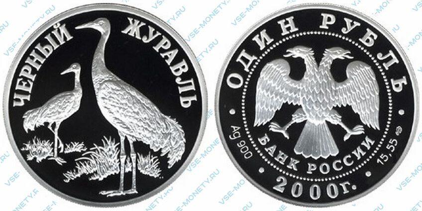 Юбилейная серебряная монета 1 рубль 2000 года «Чёрный журавль» серии «Красная книга»