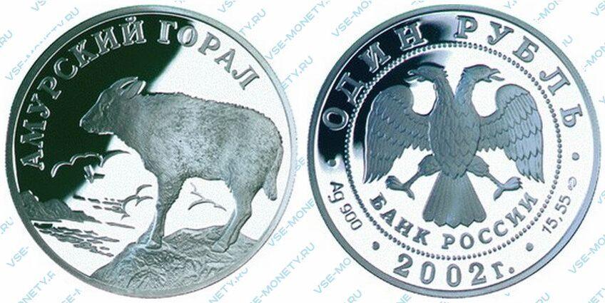 Юбилейная серебряная монета 1 рубль 2002 года «Амурский горал» серии «Красная книга»
