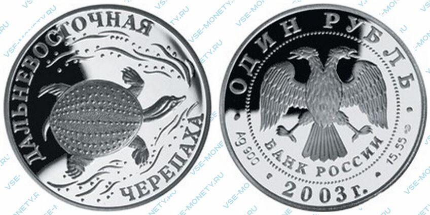 Юбилейная серебряная монета 1 рубль 2003 года «Дальневосточная черепаха» серии «Красная книга»
