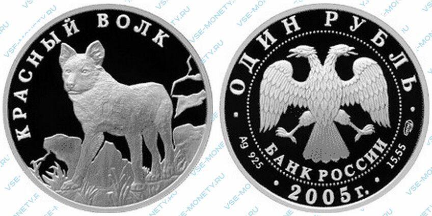 Юбилейная серебряная монета 1 рубль 2005 года «Красный волк» серии «Красная книга»