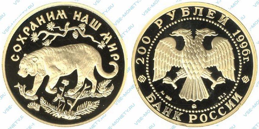 Памятная золотая монета 200 рублей 1996 года «Амурский тигр» серии «Сохраним наш мир»