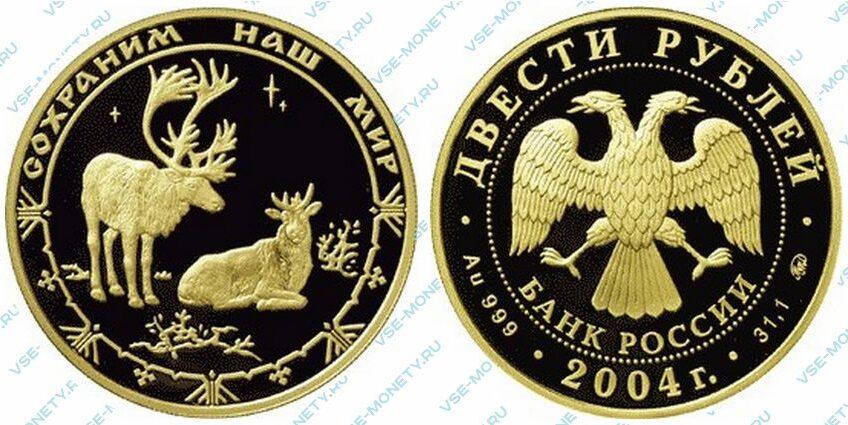 Юбилейная золотая монета 200 рублей 2004 года «Северный олень» серии «Сохраним наш мир»