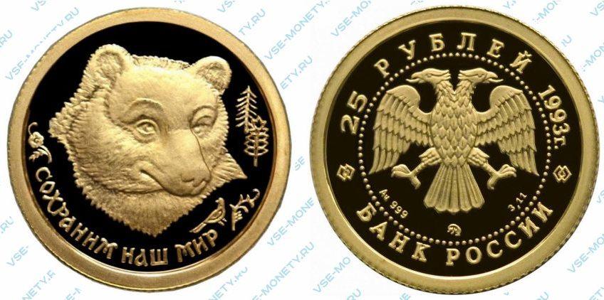 Памятная золотая монета 25 рублей 1993 года «Бурый медведь» серии «Сохраним наш мир»