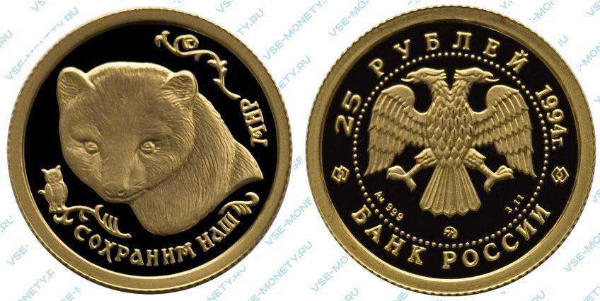Памятная золотая монета 25 рублей 1994 года «Соболь» серии «Сохраним наш мир»