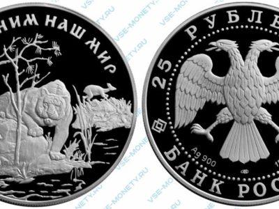 Памятная серебряная монета 25 рублей 1996 года «Амурский тигр» серии «Сохраним наш мир»