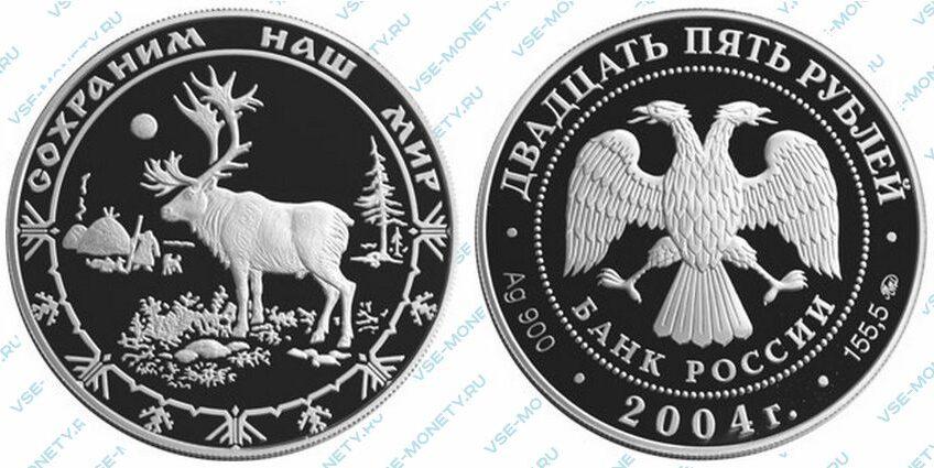 Юбилейная серебряная монета 25 рублей 2004 года «Северный олень» серии «Сохраним наш мир»