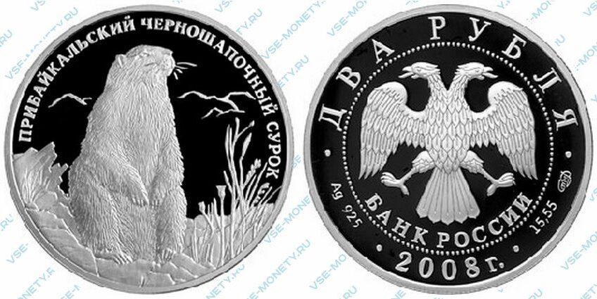 Юбилейная серебряная монета 2 рубля 2008 года «Прибайкальский черношапочный сурок» серии «Красная книга»