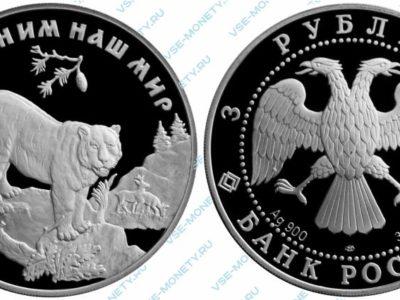 Памятная серебряная монета 3 рубля 1996 года «Амурский тигр» серии «Сохраним наш мир»