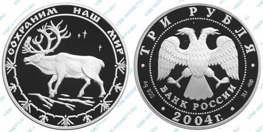 Юбилейная серебряная монета 3 рубля 2004 года «Северный олень» серии «Сохраним наш мир»