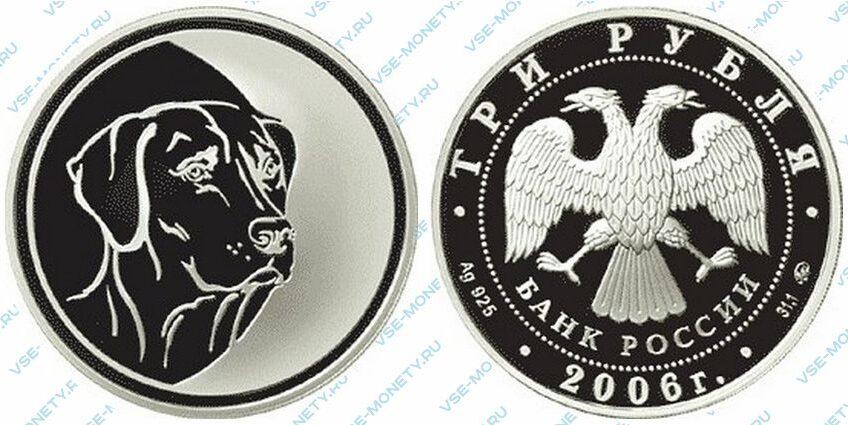 Юбилейная серебряная монета 3 рубля 2006 года «Cобака» серии «Лунный календарь»