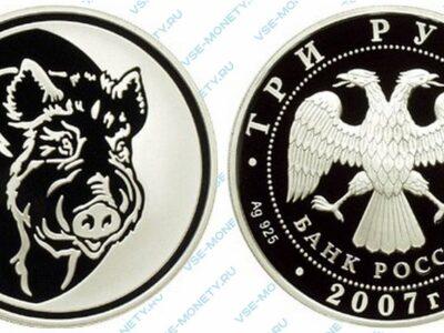 Юбилейная серебряная монета 3 рубля 2007 года «Кабан» серии «Лунный календарь»