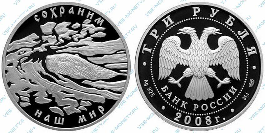 Юбилейная серебряная монета 3 рубля 2008 года «Речной бобр» серии «Сохраним наш мир»