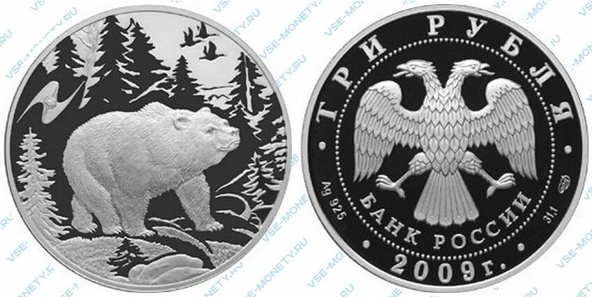 Юбилейная серебряная монета 3 рубля 2009 года «Медведь» серии «Животный мир стран ЕврАзЭС»