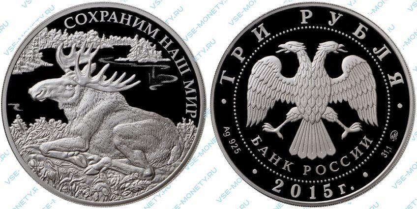 Юбилейная серебряная монета 3 рубля 2015 года «Лось» серии «Сохраним наш мир»