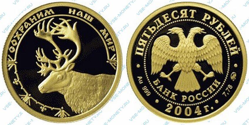 Юбилейная золотая монета 50 рублей 2004 года «Северный олень» серии «Сохраним наш мир»