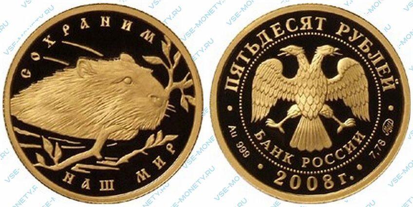 Юбилейная золотая монета 50 рублей 2008 года «Речной бобр» серии «Сохраним наш мир»