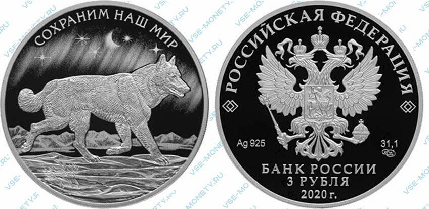 Юбилейная серебряная монета 3 рубля 2020 года «Полярный волк» серии «Сохраним наш мир»
